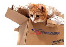 International Pet Relocation and Transport