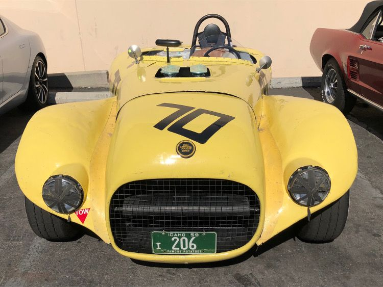 Front View of Old Yeller II